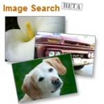 Alexa lance un moteur de recherche d'images