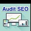 Audit SEO RM Tech de MyRankingMetrics