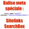Balise meta Google nositelinkssearchbox