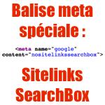 La balise meta nositelinkssearchbox (SearchBox Sitelinks)