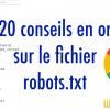 Le fichier robots.txt