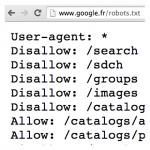 Les 20 ans du fichier robots.txt : nombreux conseils SEO