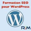 Formation SEO pour WordPress