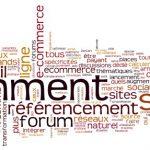 Un forum ecommerce SEO sur WebRankInfo