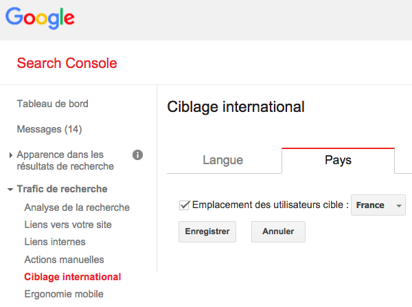 Ciblage international pays Google