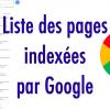 Connaître les pages indexées par Google