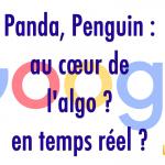 SEO : Panda est intégré dans le cœur de l'algo mais n'est pas temps réel ?