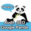 Sortir d'une pénalité Panda