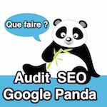 Audit de référencement naturel d'un site pénalisé par Google Panda