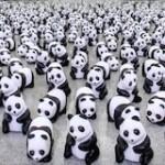 Photo : l'équipe antispam Panda de Matt Cutts