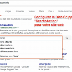 SERP Google : gérer la Search Box Sitelinks pour son site