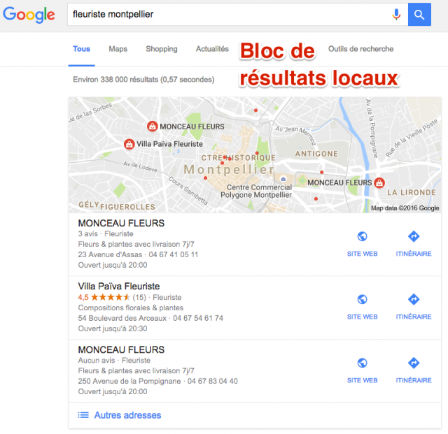 Résultats locaux Google