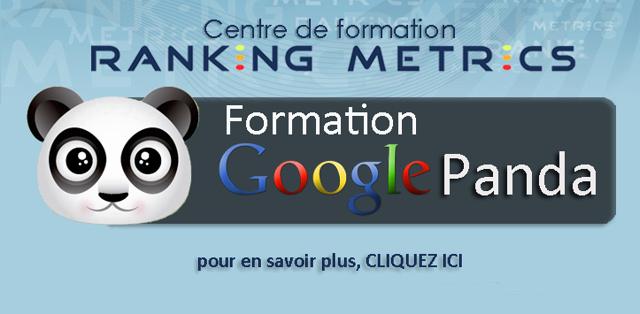 Formation Google Panda par Ranking Metrics