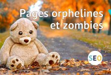 Dossier pages orphelines et zombies