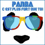 Officiel : Google Panda sorti le 18 juillet 2013 (version 27 ?)