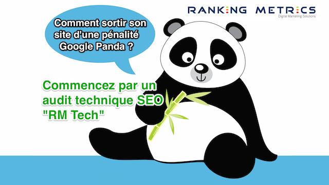 Audit SEO Panda