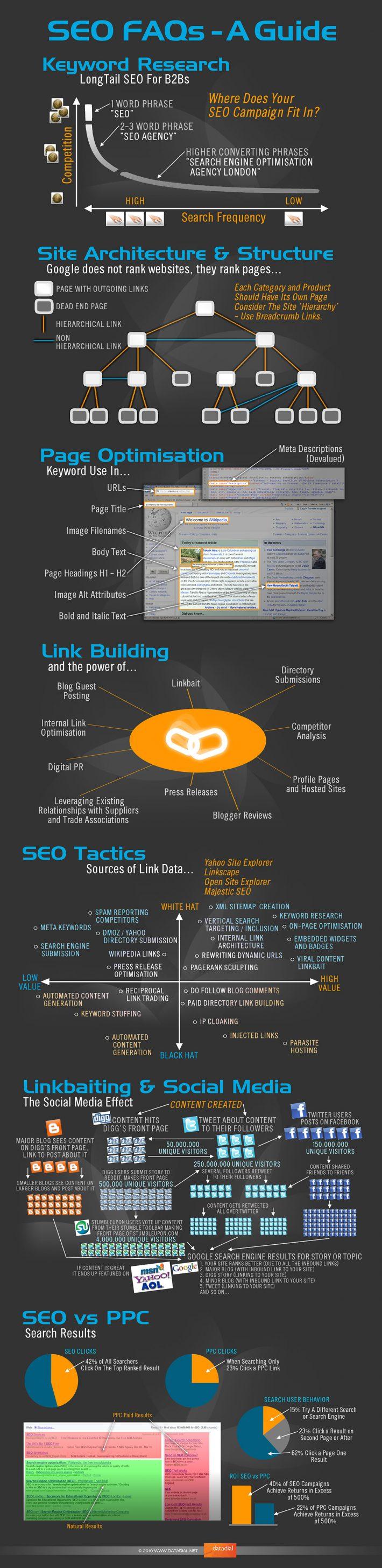 Infographie du SEO