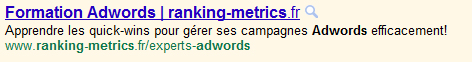 nom domaine titre google adwords
