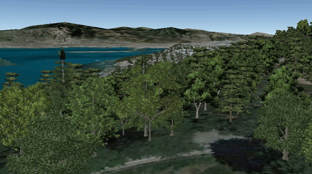 Arbre 3D Google Earth