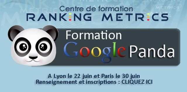 Formation referencement Google Panda