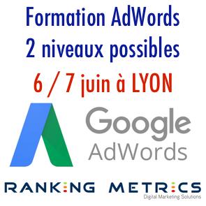 Formation AdWords Ranking Metrics Lyon