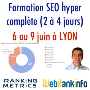 Formation SEO Ranking Metrics Lyon